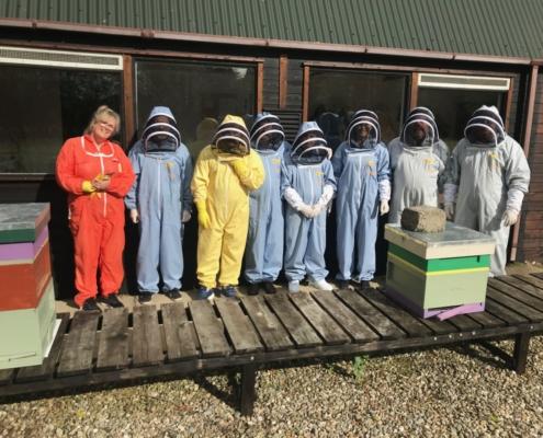 Beekeeping Club