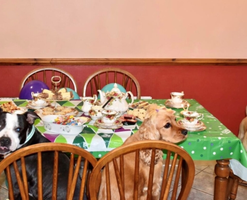 Dolly's tea party for Macmillan Cancer
